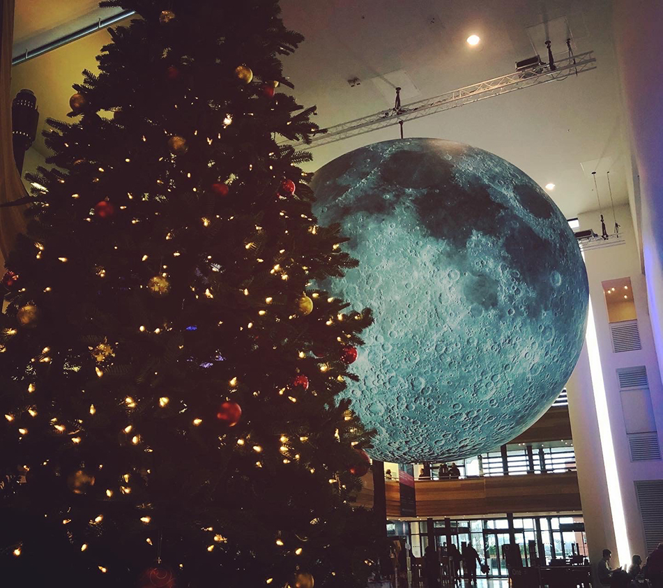 The moon, seen behind a Christmas tree.