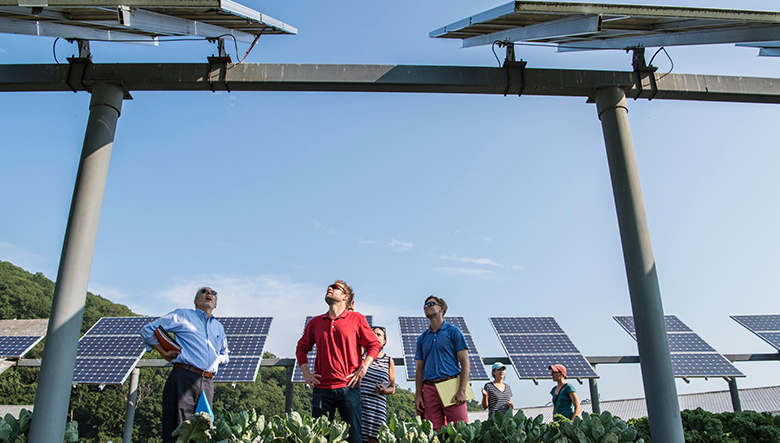 men surrounded by solar panels