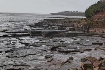 Locals investigate the fossils at The Bendricks beach.