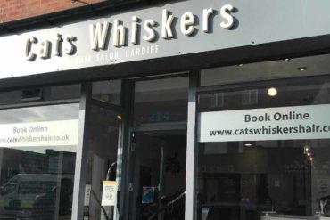 Cat's whiskers salon